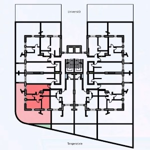 Primo piano – Tipo 5